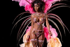 Individual Revel Nation Carnival 4 Miami Carnival