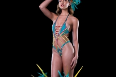 Ikran Frontline option with large head piece , feathered legs , arm sleeve. Shown with monokini body option