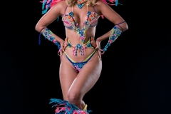 Frontline option large head pc, feathered leg pcs . Shown with wirebra and gem bikini body option