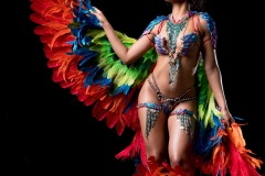 Frontline Revel Nation Carnival 4 Miami Carnival