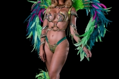 Section Leader large head pc, Backpack and feathered legs .shown with wire bra and gem bikini body option