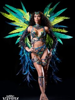 Frontline – Tiara, backpack, frontline leg pcs, neck piece, arm pieces. Shown with Wire Bra and Gem bikini body option