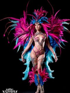 Section Leader- feathered head pc, Backpack, feathered legs, fline neck pc & wrist pcs. Shown with Wire bra and gem bikini body option