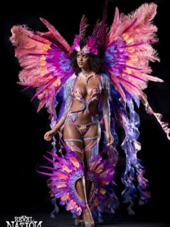 Section Leader Revel Nation Carnival 4 Miami Carnival