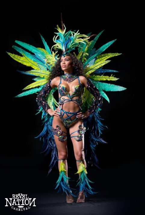 Section leader - Feathered head pc, backpack, feathered leg pcs. Shown with Wire bra & Gem bikini body option